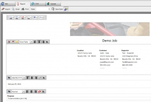 Report Customize